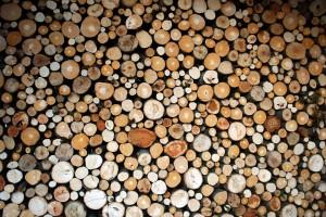 Energia z drewna - zobacz program konferencji