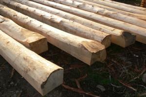 Konkurencyjnośc przemysłu drzewnego w projekcie