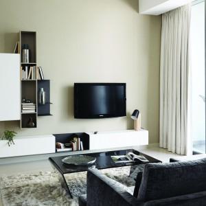 Doskonałym rozwiązaniem do nowoczesnych salonów są minimalistyczne meblościanki, Fot. BoConcept