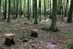 Witamina D. Zobacz meble inspirowane naturą