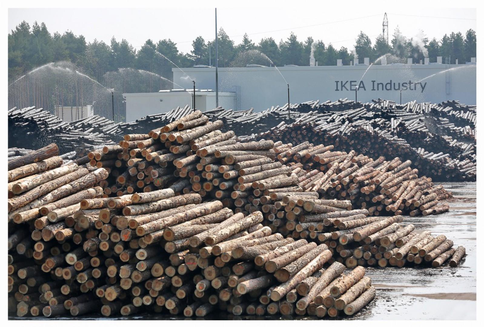 Tartak IKEA Industry w Stalowej Woli. Fot. IKEA