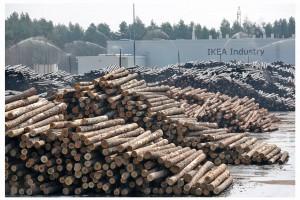 Nowa inwestycja IKEA Industry – produkcja zielonej energii
