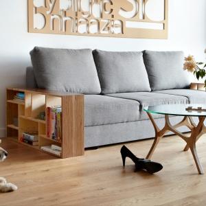 Sofa praktycznymi półkami na książki. Fot. Tabanda