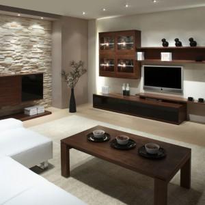 Kolekcja do salonu Multiform pozwala efektownie i funkcjonalnie zagospodarować ścianę w salonie. Fot. Klose