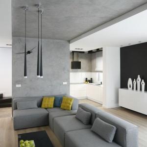 Szary kolor doskonale pasuje do nowoczesnych wnętrz. Można potraktować go jako kolor przewodni lub jako dodatek. Projekt: Karolina Stanek-Szadujko, Łukasz Szadujko. Fot. Bartosz Jarosz