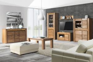 Przytulny salon. Piękne kolekcje z rysunkiem drewna