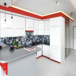 Zabudowy L zakończone półwyspem są doskonałą opcją do małego pomieszczenia, gdzie kuchnia graniczy z salonem. Projekt: Monika Olejnik. Fot. Bartosz Jarosz