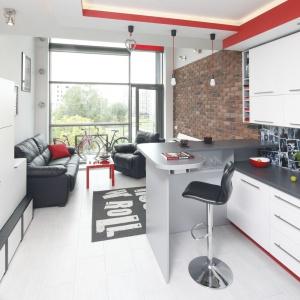 Mały salon zaaranżowany w bieli, uromaocony czarnymi i czerwonymi dodatkami. czarna sofa oraz fotel pięknie prezentują się na tle ściany wykonczonej cegłą. Projekt: Monika Olejnik. Fot. Bartosz Jarosz