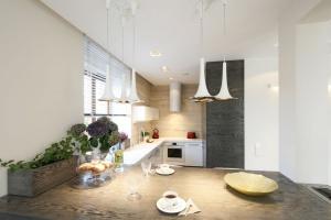 Mała kuchnia. 20 pomysłów na piękne wnętrze