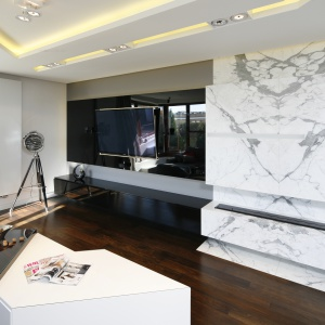 Salon urzadzony w nowoczesnym stylu. Czarna szafka idealnie wpisuje się w stylistykę wnętrza. Projekt: Katarzyna Kiełek, Agnieszka Komorowska-Różycka. Fot. Bartosz Jarosz