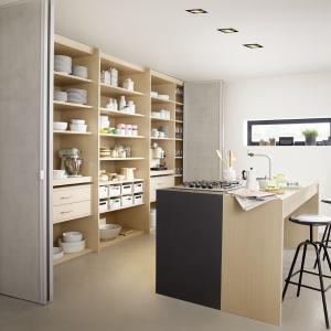 Kuchnia ukryta za drzwiami przesuwnymi to wygoda w przypadku pomieszczeń, które wymagają racjonalnego gospodarowania powierzchnią. Fot. Raumplus