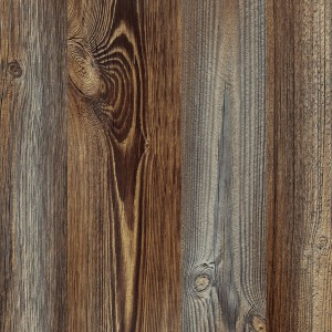 Picea, Interprint