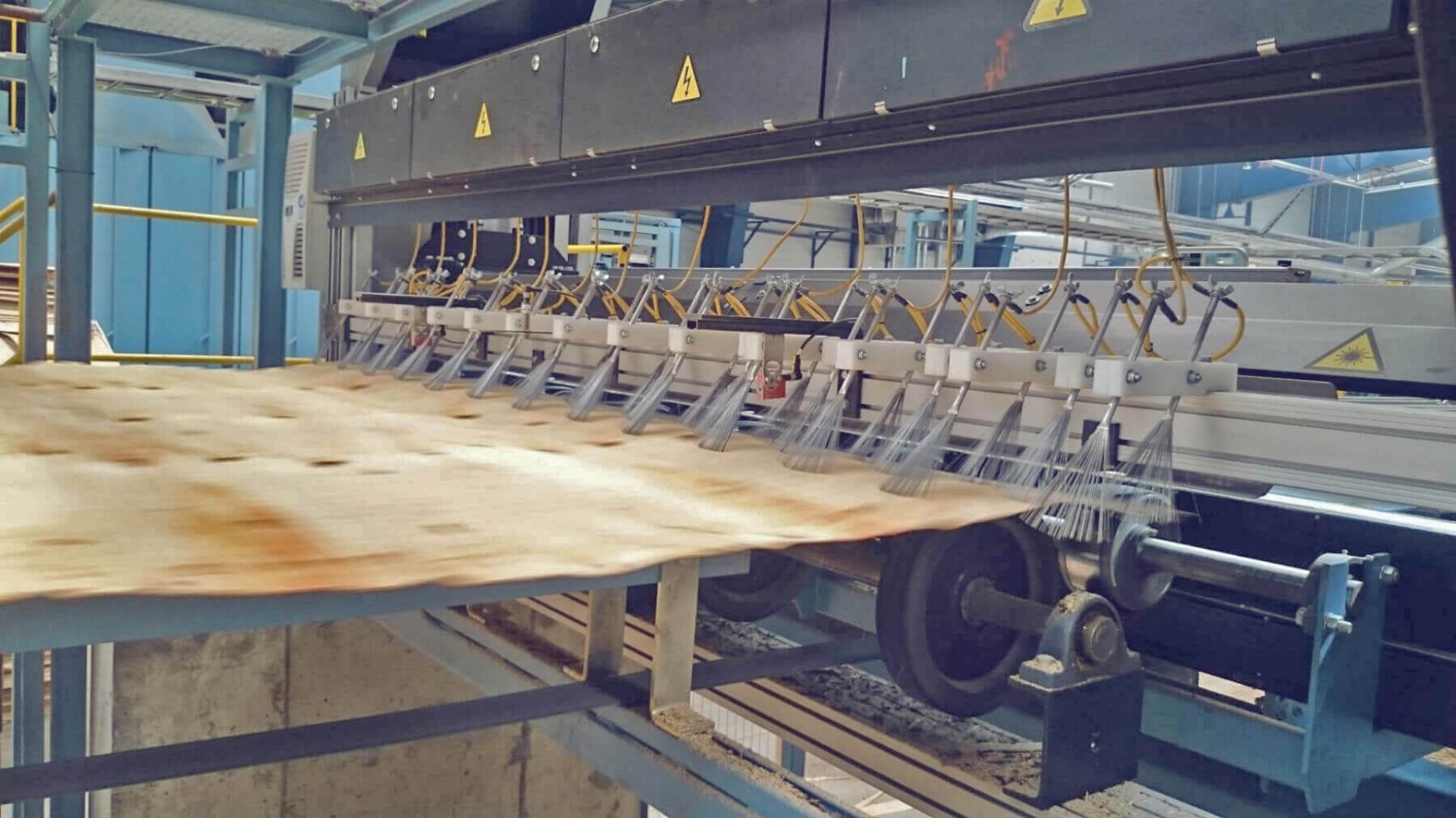Jeden z zakładów produkcji sklejki, należących do Grupy Paged