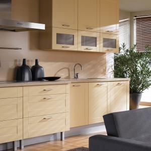 Na styku kuchni i salonu można ustawić funkcjonalny i praktyczny zestaw wypoczynkowy. Fot. Black Red White