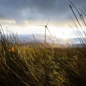 Farma wiatrowa. Fot. Mat. prasowe IKEA.jpg