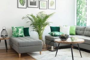 Minimalistyczne meble - ozdoba wnętrza w każdym stylu