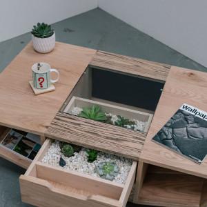 Farrell Livingstone zaprojektował stolik kawowy z wysuwanym japońskim ogrodem. Fot. Ben Tynega