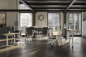 Meble biurowe - zadbaj o ergonomię i wygodę
