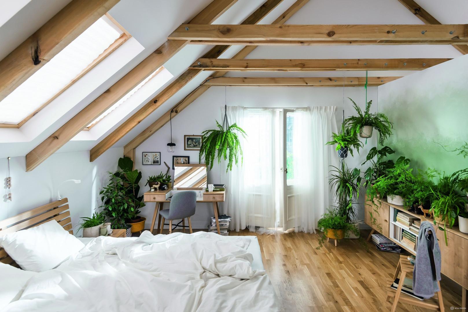 Wnętrze zaaranżowane z użyciem żywej zieleni. Fot. Vox