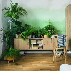 Wnętrza, w których wykorzystano żywe rośliny, pomagają się zrelaksować. Fot. Vox