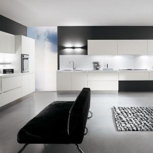Zastosowanie analogicznych kolorów w meblach kuchennych i salonowych pozwoli stworzyć harmonijną całość. Fot. Biefbi