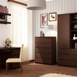 Domowe biuro - meble z serii Pelo. Fot. Meble Wójcik