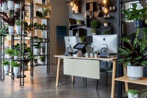 Biophilic design - jak wprowadzić naturę do przestrzeni biurowej