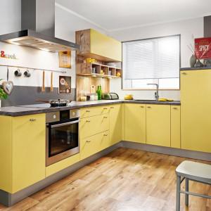 Oryginalna kolorystyka przyciągnie uwagę nawet w niedużej zabudowie kuchennej. Fot. Kam