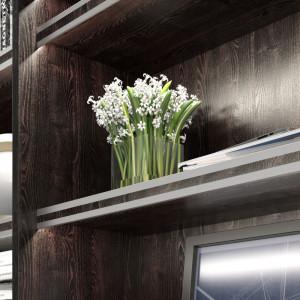 Oświetlenie ledowe eksponuje znajdujące się na półkach przedmioty. Fot. GTV