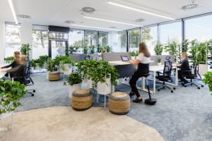 Biophilic design - jak stworzyć zdrową przestrzeń pracy