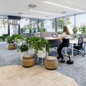 Biuro firmy Nordea zostało zaprojektowane zgodnie z zasadami Biophilic Design. Fot. Workplace Solutions
