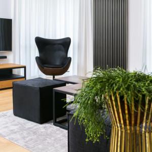 Mieszkanie miało stanowić swoistą galerię sztuki, eksponującą design w najlepszym jego wydaniu. Projekt: 3DProjekt architektura.