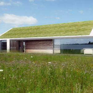 Dom z zielonym dachem. Projekt: Gosia Łapaj, Kuba Kowalczyk