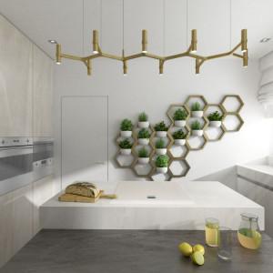 Wnętrze domu Moody-Woody (kuchnia). Projekt: 3DProjekt. Fot. Materiały prasowe