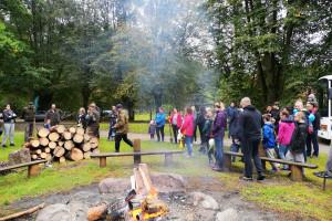 Tysiące młodych drzew od firmy Elita