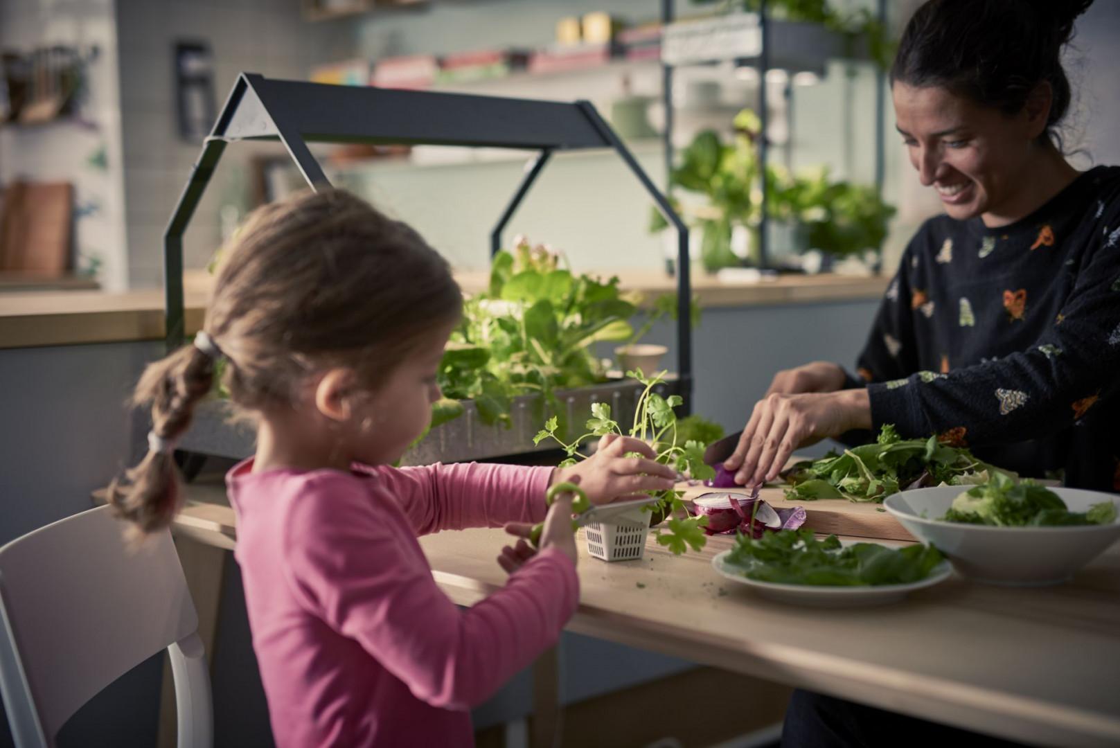 """W ramach strategii zrównoważonego rozwoju """"People & Planet Positive"""" IKEA wycofa m.in. plastikowe produkty jednorazowego użytku ze swoich sklepów i restauracji. Fot. serwis prasowy IKEA"""