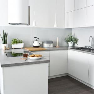 Nowoczesna kuchnia – poznaj sprawdzone pomysły projektantki. Fot. Miśkiewicz Design
